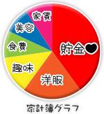 船橋|千葉|錦糸町の高収入風俗アルバイト【キャンパスサミットグループ】りおんの家計簿グラフ